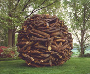 la Nature en base de travail, Andy Goldsworthy Glaceb10