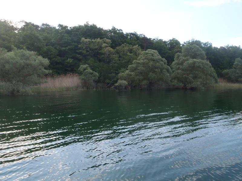 le lac de la fôret d'orient P5190010