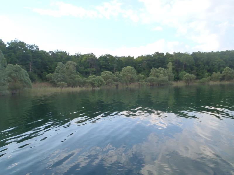le lac de la fôret d'orient P5190012