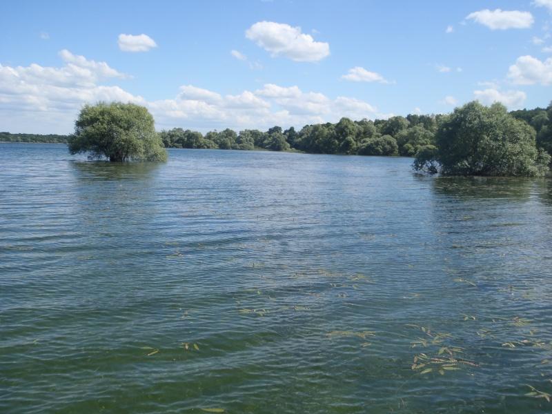 le lac de la fôret d'orient P5190017