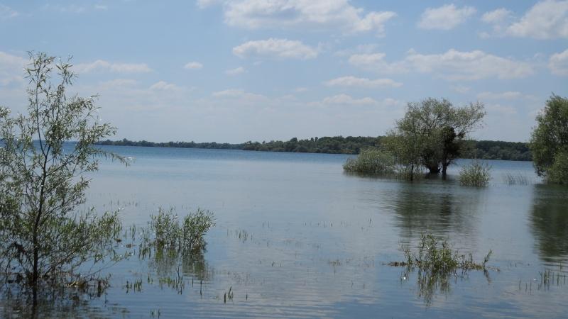 le lac de la fôret d'orient Sam_1015