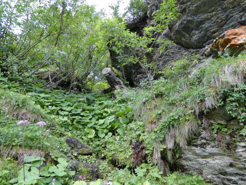 Rocher de la Davie par le Chenal Dsc03037