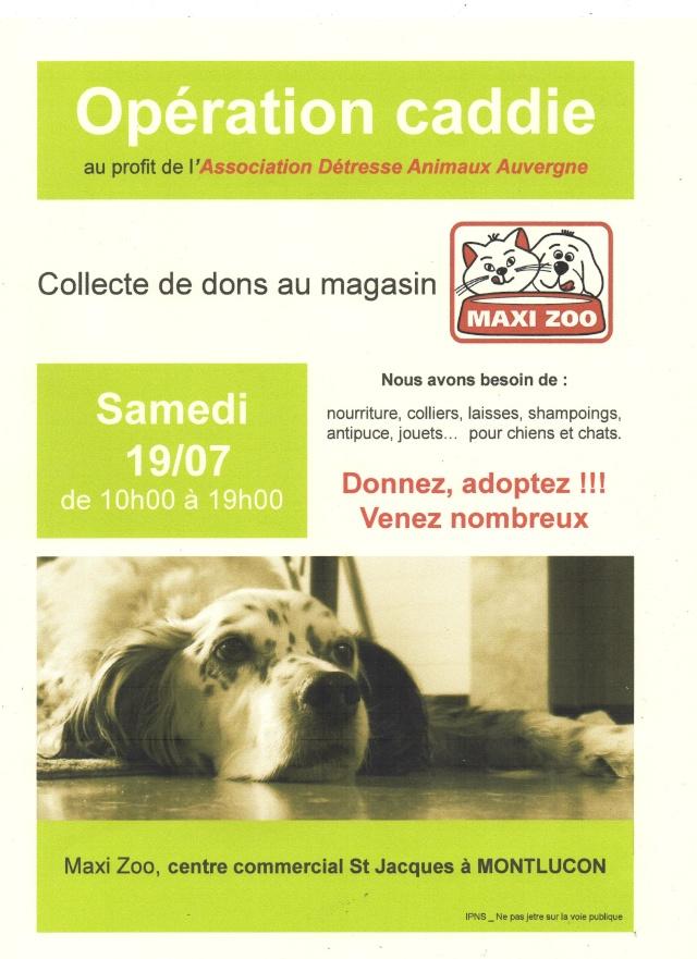 Opération caddie et adoption à Maxi Zoo à Montluçon Img05910