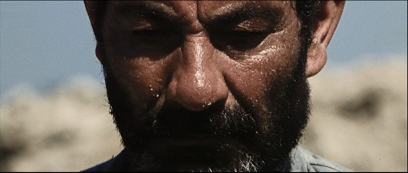 [Second rôle] Alberigo Donadeo Alberi12