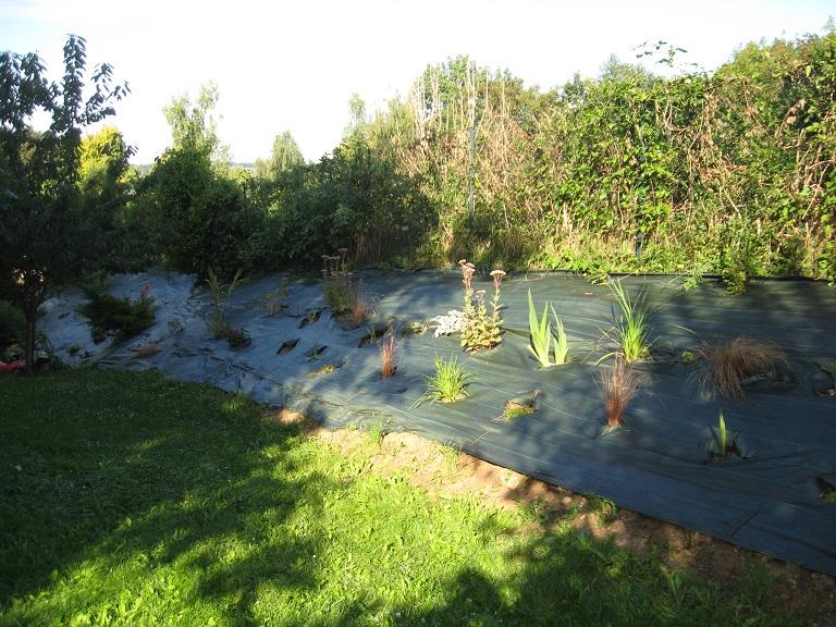 Plantation d'un talus Vue_d_10