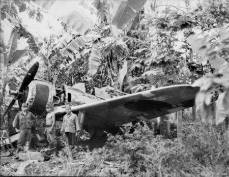 Chasseurs de l'Imperial Japanese Army Air Force . Jap110