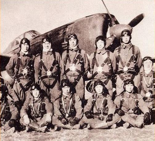 Chasseurs de l'Imperial Japanese Army Air Force . Jap310