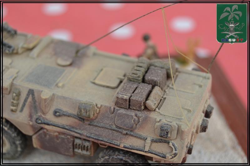 VAB Infanterie - 2° REI - Division Daguet  [Heller 1/72ème] Dsc_0115