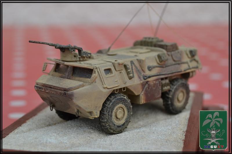 VAB Infanterie - 2° REI - Division Daguet  [Heller 1/72ème] Dsc_0116