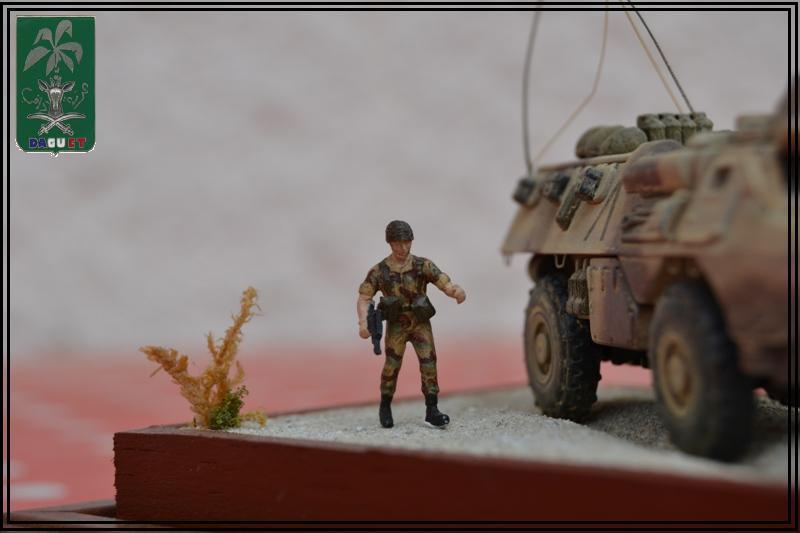 VAB Infanterie - 2° REI - Division Daguet  [Heller 1/72ème] Dsc_0118