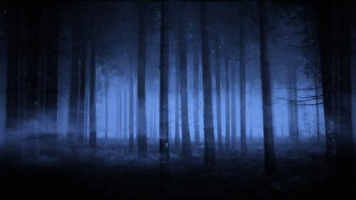 Terreurs nocturnes  Enchan10