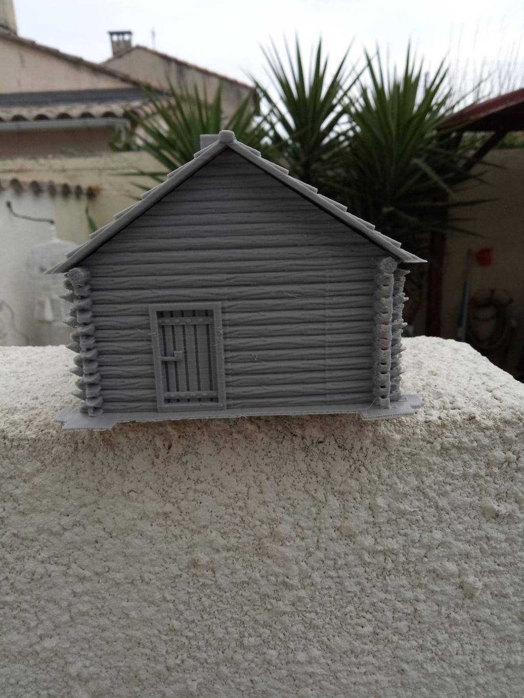 Maison en rondins !  Img_2065