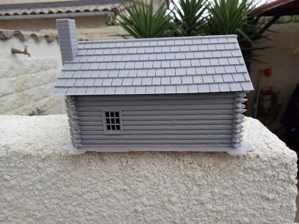 Maison en rondins !  Img_2066