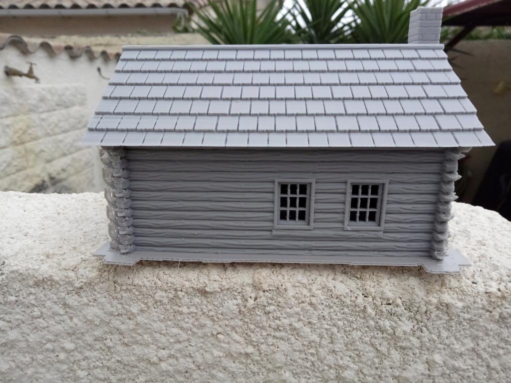 Maison en rondins !  Img_2067
