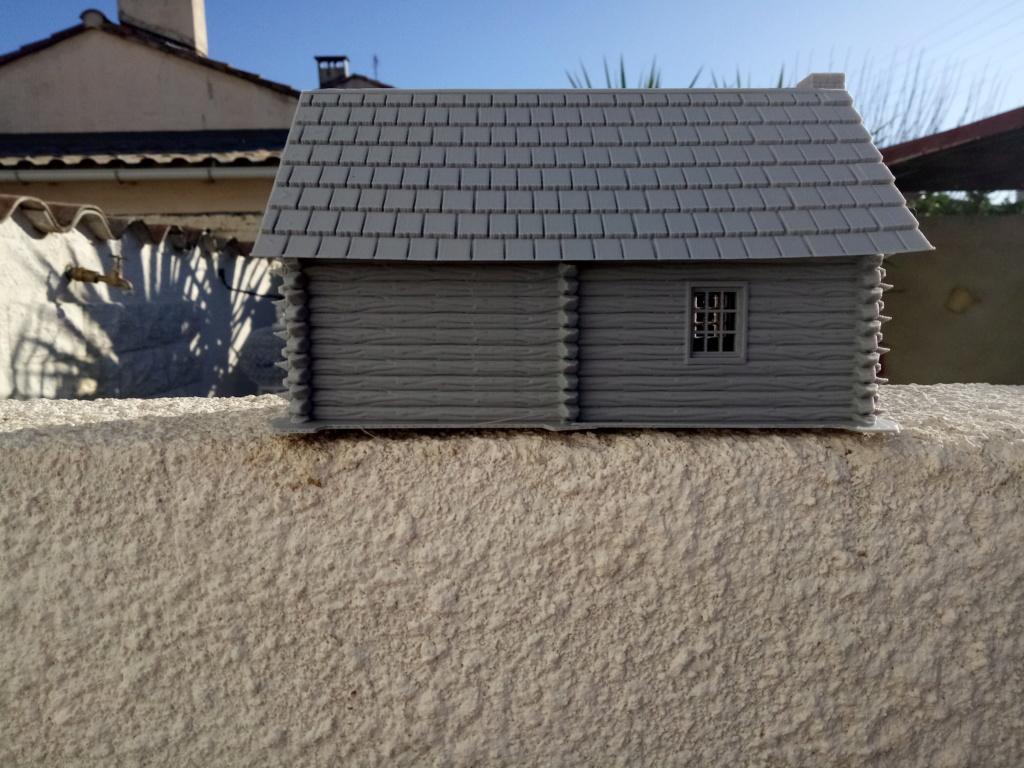 Maison en rondins !  Img_2071