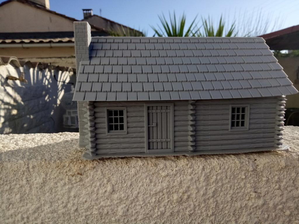 Maison en rondins !  Img_2072