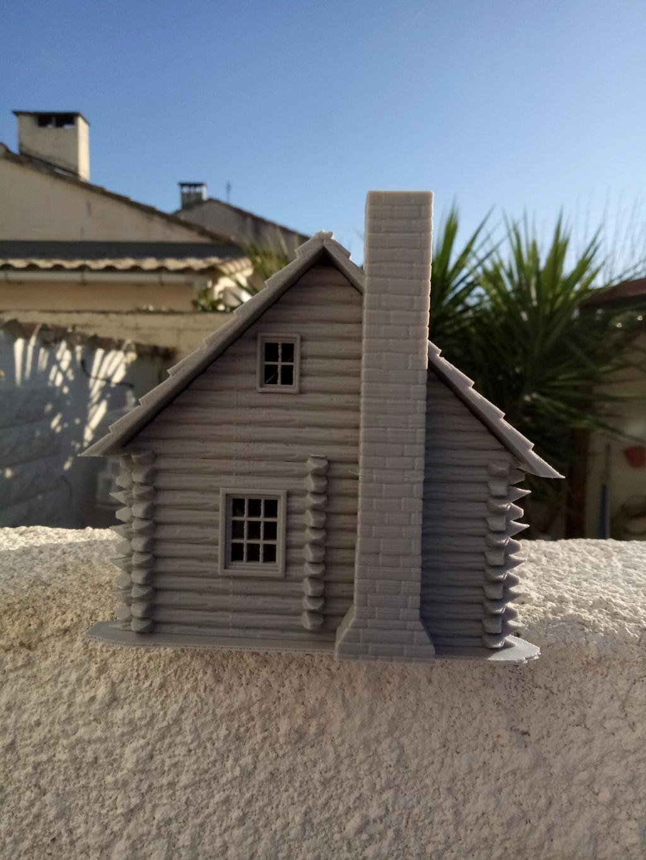 Maison en rondins !  Img_2073
