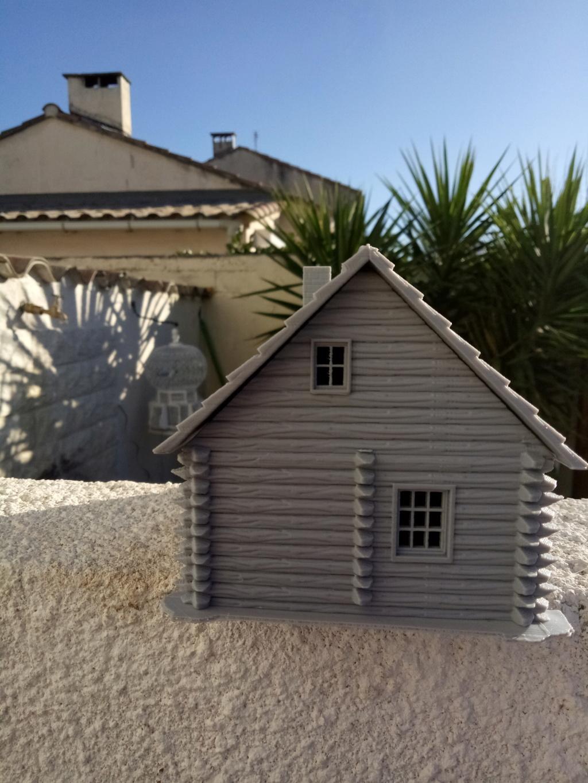 Maison en rondins !  Img_2074