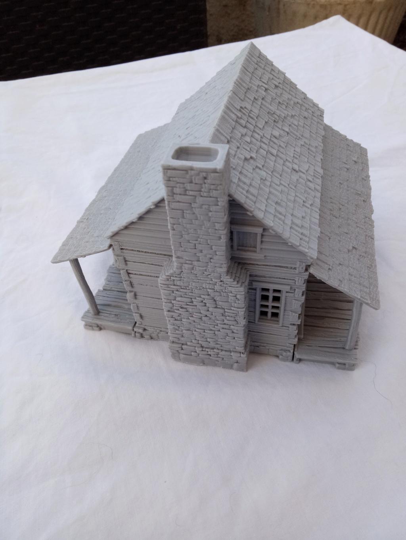 Maison en rondins !  Img_2076