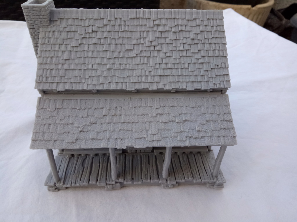 Maison en rondins !  Img_2077