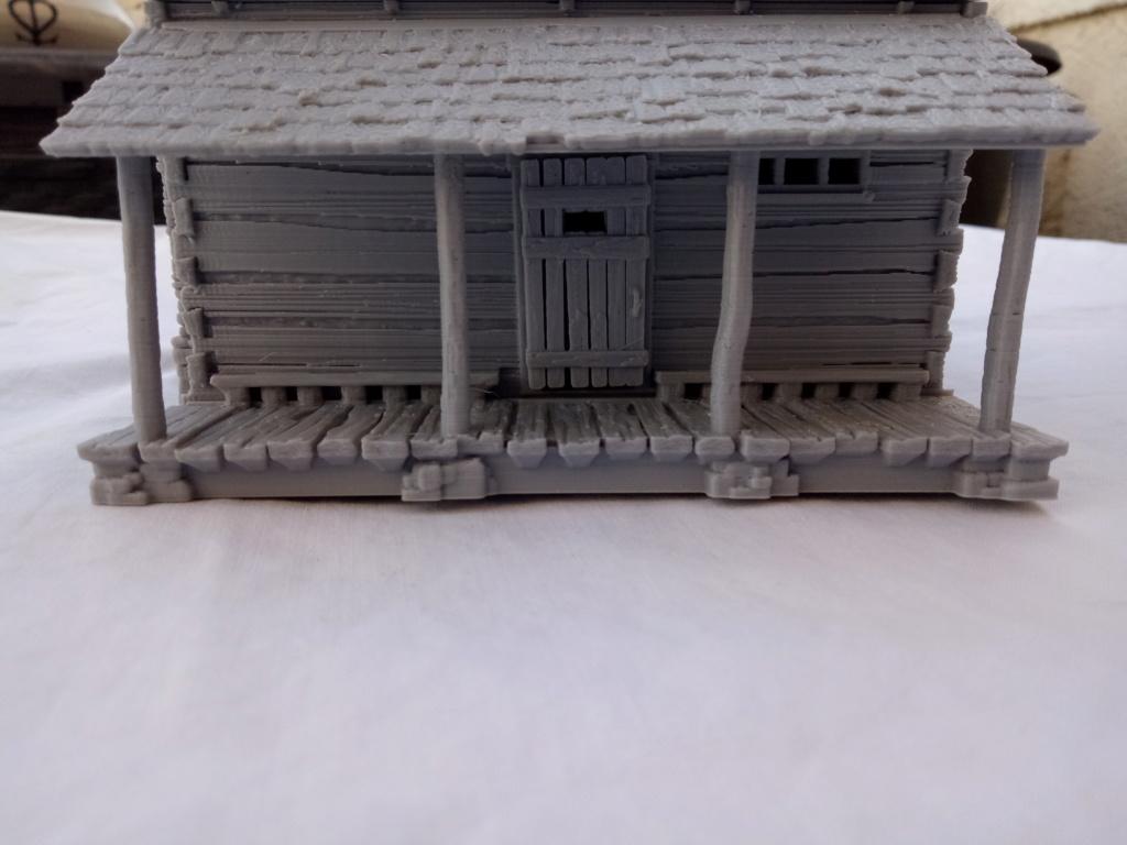 Maison en rondins !  Img_2078