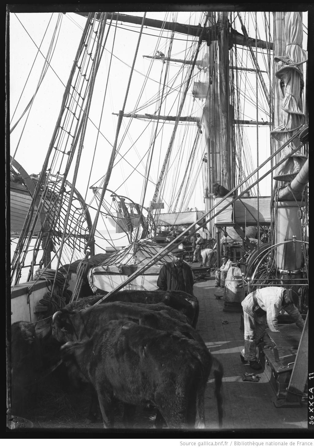 Vipère, canonnière de station de 1879 au 1/50 - Page 3 Escadr17