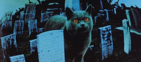 """Kuscheltiere - """"Friedhof der Kuscheltiere""""  (  Pet Sematary, USA, 1989  ) Zz037510"""