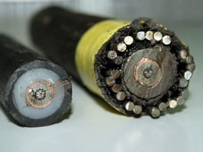 Cáp quang và các thiết bị dùng cho cáp quang 1-207110