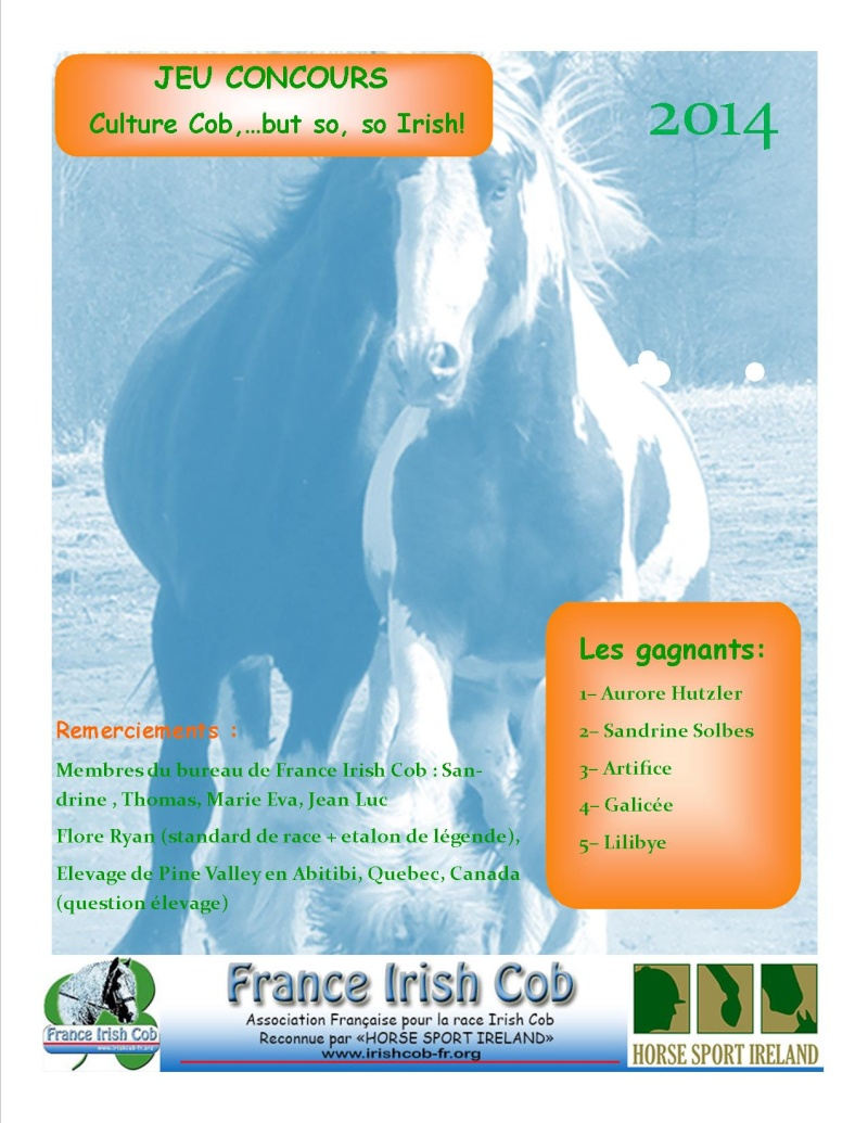 "Grand jeu avant le National - ""Culture Cob, but ...so so Irish ! Result10"