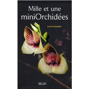 Orchidées faciles à vivre 51mp1h10