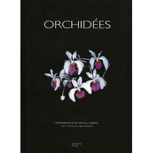 Orchidées faciles à vivre Orchid16