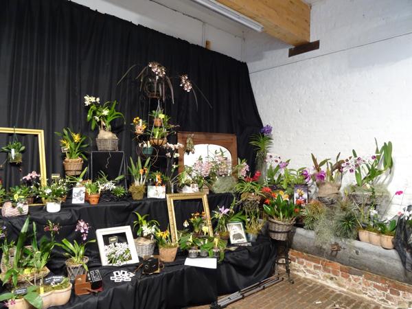 Orchidays 2014 - Exposition à la Ferme de l'Hostellerie Nivelles (Belgique) - 29, 30, 31 mai, 1er juin 2014 Stand_11