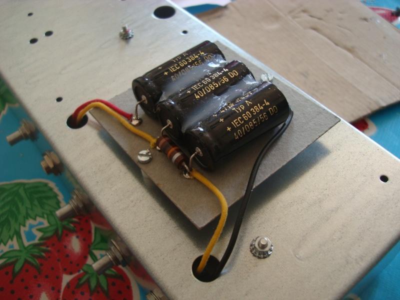 Construction d'une '63 Fender Standalone Reverb' Unit Dsc06021