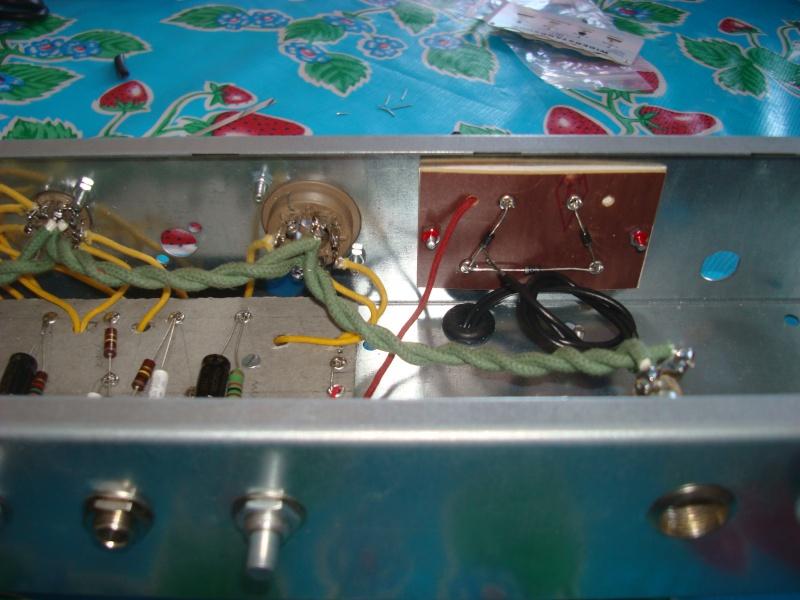 Construction d'une '63 Fender Standalone Reverb' Unit Dsc06025