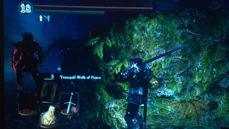 To NG + Gravelord Tour of Lordran SL 70 9-15-2012 Butterfly Forest Area - Page 32 12090011