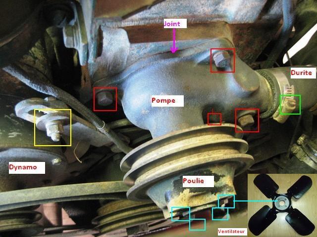 Démontage ou remplacement pompe à eau Pompe_11