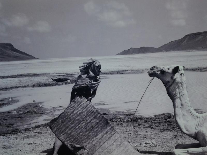 [Le désert] Sahara et atlantique : plus au Sud , bivouacs , photos ... 20120918