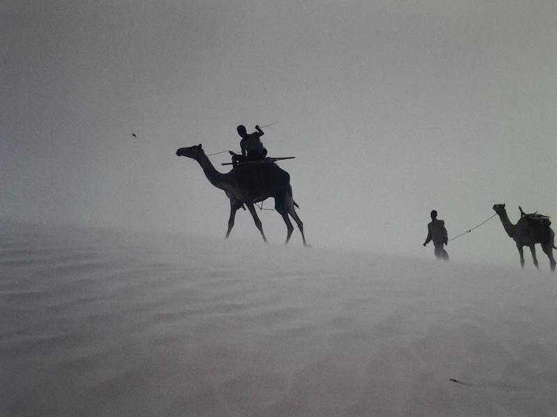 [Le désert] Sahara et atlantique : plus au Sud , bivouacs , photos ... 20120921