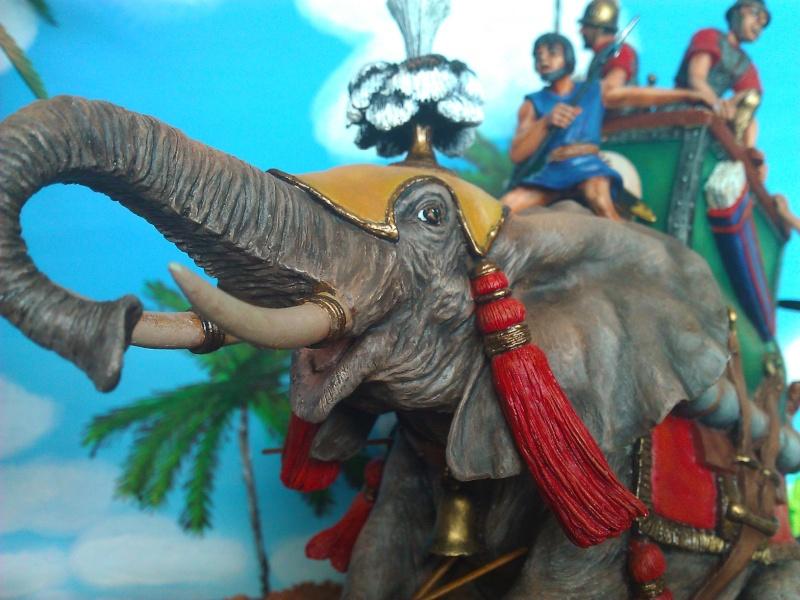 Elephant de Guerre carthaginois. - Page 2 Wp_00267