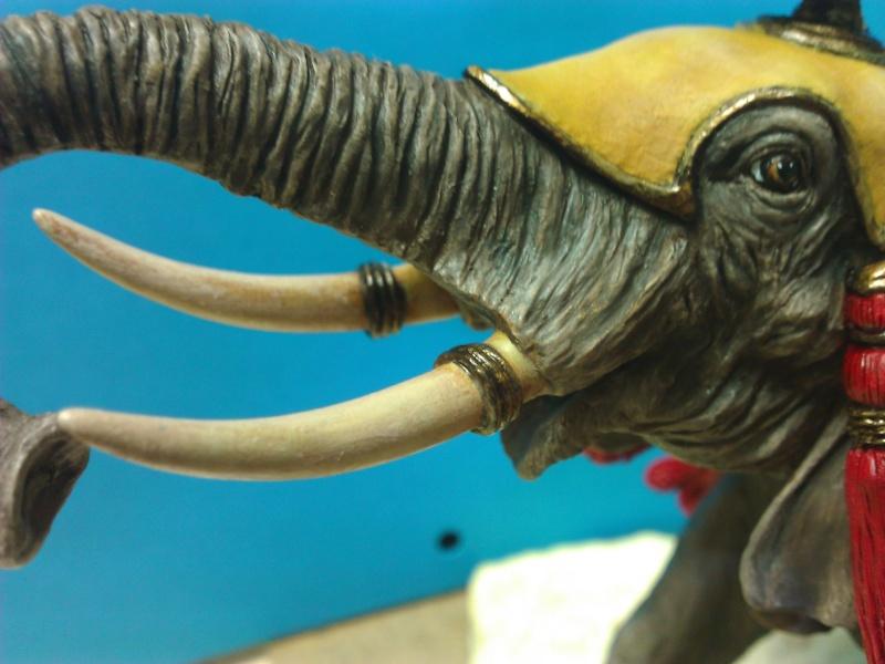 Elephant de Guerre carthaginois. Wp_00313