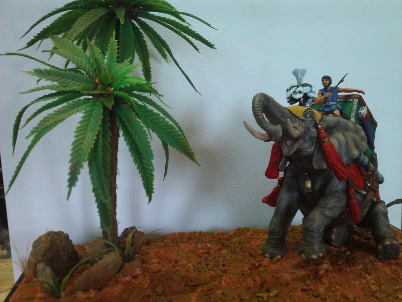 Elephant de Guerre carthaginois. - Page 2 Wp_00510