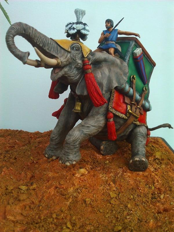 Elephant de Guerre carthaginois. - Page 2 Wp_00511
