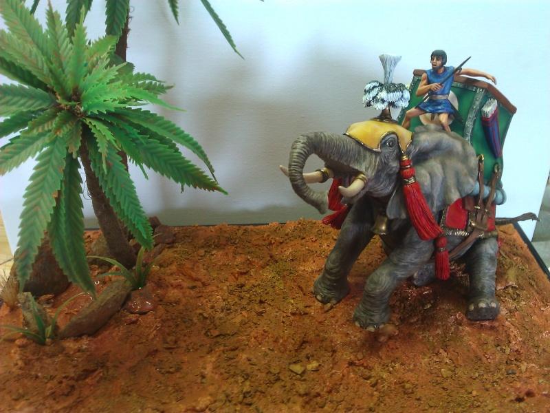 Elephant de Guerre carthaginois. - Page 2 Wp_00513