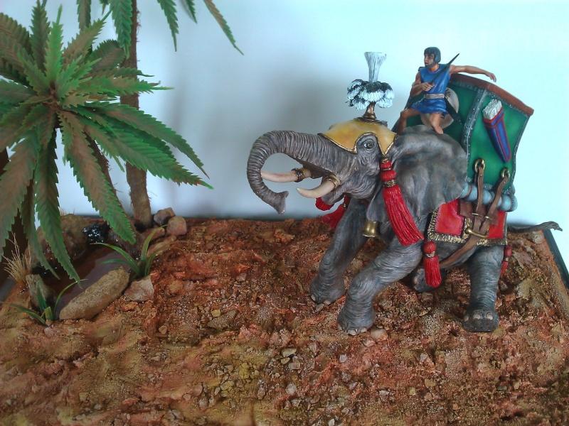Elephant de Guerre carthaginois. - Page 2 Wp_00518