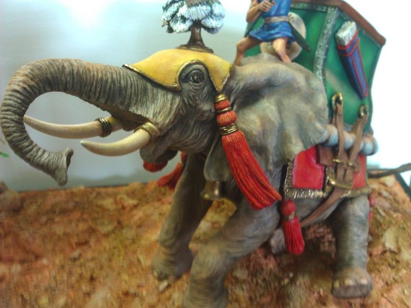 Elephant de Guerre carthaginois. - Page 2 Wp_00521