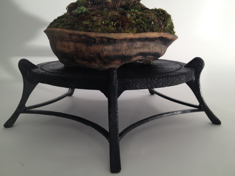 Burnt Bonsai table Img_4311