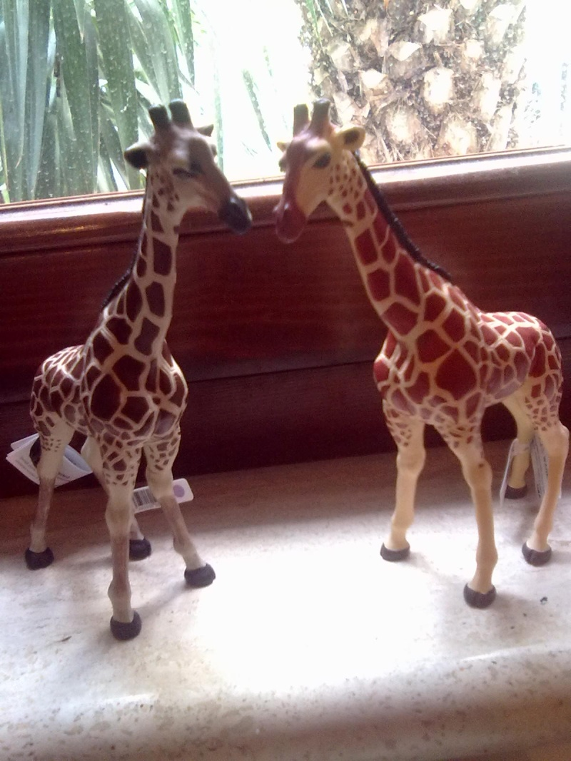 PAPO VINTAGE AT HOME, AND 2 DIFFERENT GIRAFFES  15102013