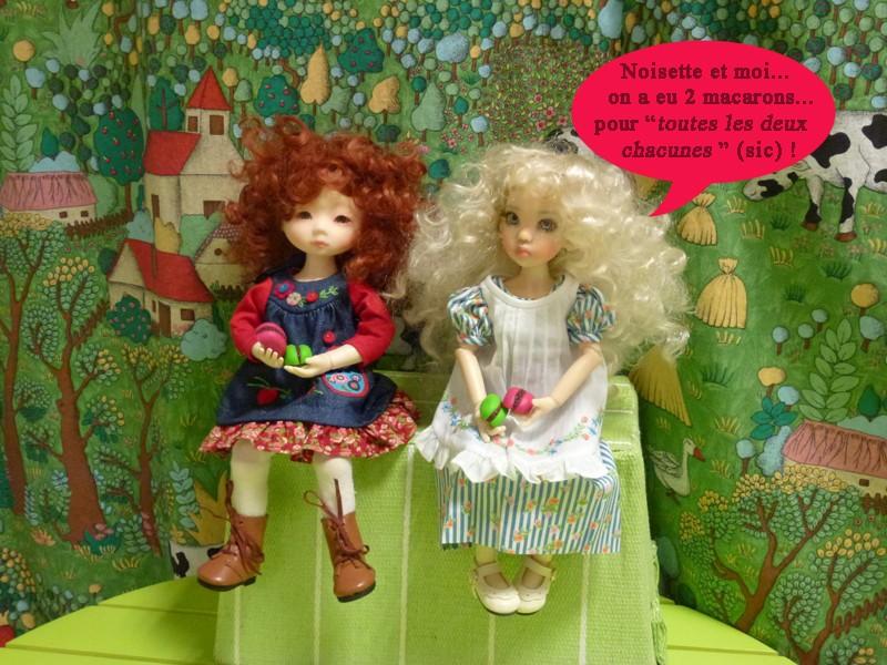 Ma 2ème K W... la 3ème... Opale... et Ambre... sa soeur jumelle... trop sages. P. 14 - Page 7 P1110411