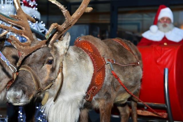 Ho Ho Ho! Merry Christmas!  2014  510