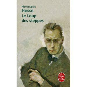 Bibliothèque idéale Le_lou10